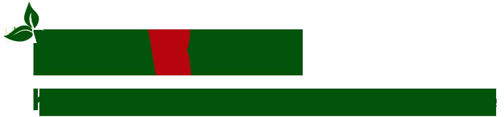 logoVinabook